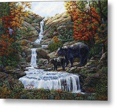 Black Bear Falls Metal Print