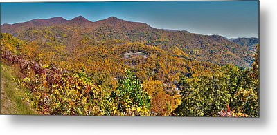 Metal Print featuring the photograph Blue Ridge Parkway by Alex Grichenko