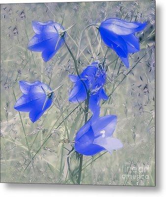 Bluebells Metal Print by Sylvia  Niklasson