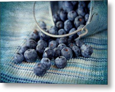 Blueberries Metal Print by Darren Fisher