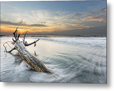 Bough In Ocean Metal Print