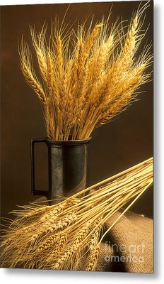 Bouquet Of Wheat Metal Print