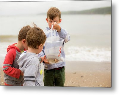 Boys Holding Crab Metal Print