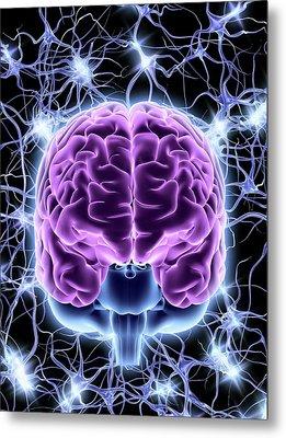 Brain And Nerve Cells Metal Print