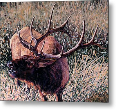 Metal Print featuring the painting Bugle Boy by Craig T Burgwardt