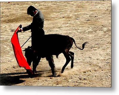 Bullfighter In Training Metal Print