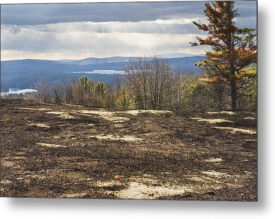 Burnt Blueberry Field In Maine Metal Print by Keith Webber Jr