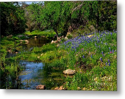 By The Stream Metal Print