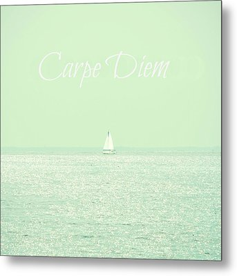 Carpe Diem Metal Print by Robin Dickinson