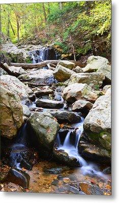 Metal Print featuring the photograph Cascade Falls by Dana Sohr