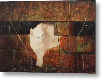 Castaway Cats Metal Print by Blue Sky