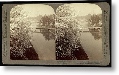 Cherry-blossoms Along The Moat Surrounding The Imperial Metal Print