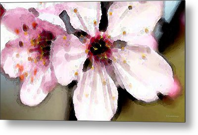 Cherry Blossoms By Sharon Cummings Metal Print by William Patrick