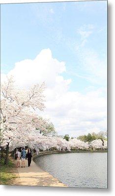 Cherry Blossoms - Washington Dc - 01131 Metal Print by DC Photographer