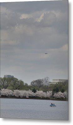 Cherry Blossoms - Washington Dc - 011319 Metal Print by DC Photographer