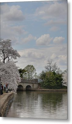 Cherry Blossoms - Washington Dc - 011330 Metal Print by DC Photographer