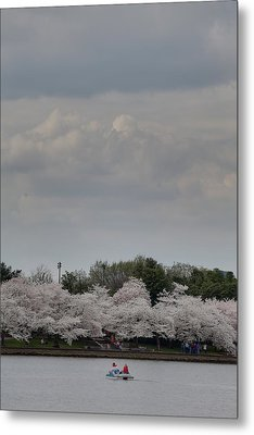 Cherry Blossoms - Washington Dc - 01139 Metal Print by DC Photographer