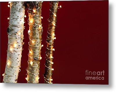 Christmas Lights On Birch Branches Metal Print by Elena Elisseeva