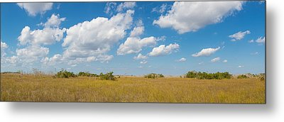 Clouds Over Everglades National Park Metal Print by Panoramic Images