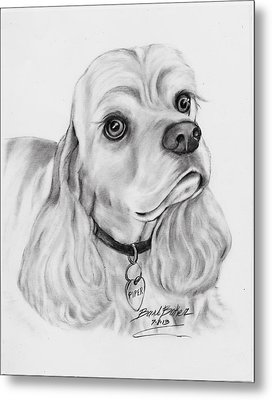 'cocker Spaniel' Metal Print