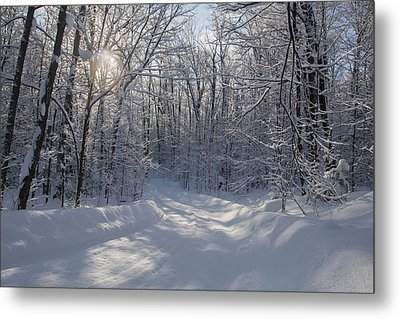 Cottage Country Winter Metal Print by Pat Speirs