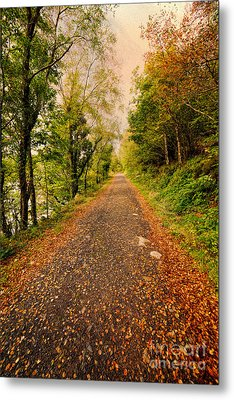Country Lane Metal Print by Adrian Evans