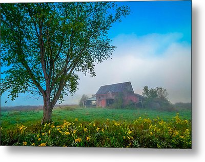 Country Morning Metal Print by Brian Stevens