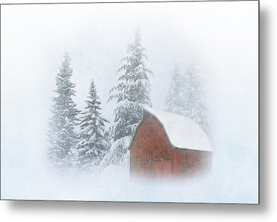 Country Winter-2 Metal Print by Angie Vogel