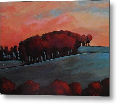 Countryside Metal Print by Suzanne Tynes