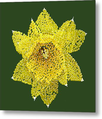 Daffodil Bedazzled Metal Print by R  Allen Swezey