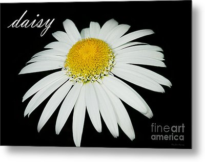 Daisy Metal Print by MaryJane Armstrong