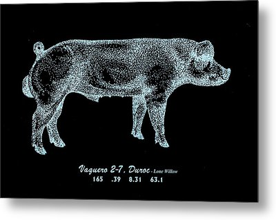 Metal Print featuring the drawing Danish Duroc by Larry Campbell