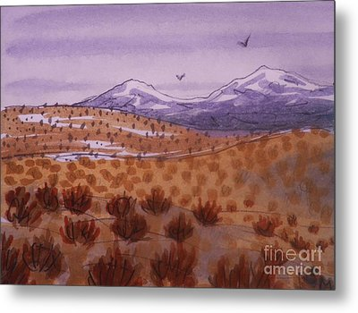 Desert Contrasts Metal Print by Suzanne McKay