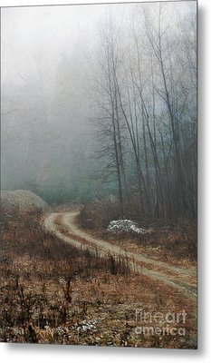 Dirt Road Metal Print by HD Connelly