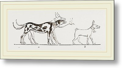 Dogs From Egyptian Paintings Metal Print by Litz Collection