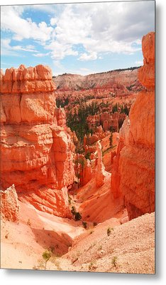 Down Into Bryce Metal Print by Jeff Swan