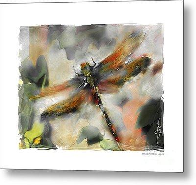 Dragonfly Garden Metal Print by Bob Salo