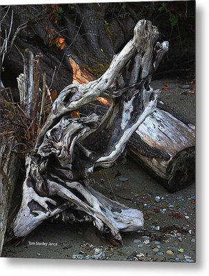 Driftwood On The Beach Metal Print by Tom Janca