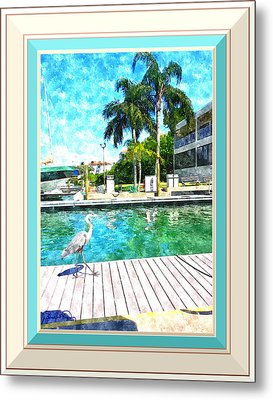 Dry Dock Bird Walk - Digitally Framed Metal Print