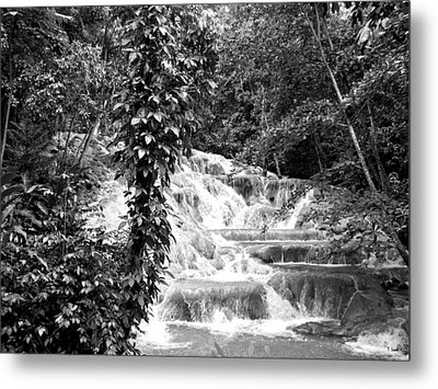 Dunn's River Metal Print by Thomas Leon