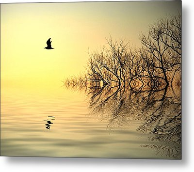 Dusk Flight Metal Print by Sharon Lisa Clarke