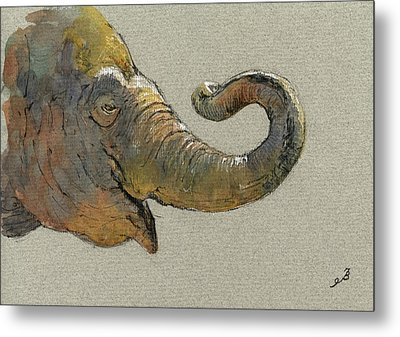 Elephant Head Metal Print by Juan  Bosco