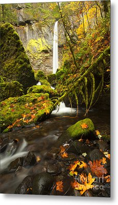 Elowah Autumn Metal Print by Mike  Dawson