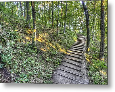 Empire Bluff Trail Metal Print by Twenty Two North Photography