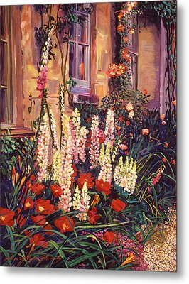 English Cottage Garden Metal Print by David Lloyd Glover
