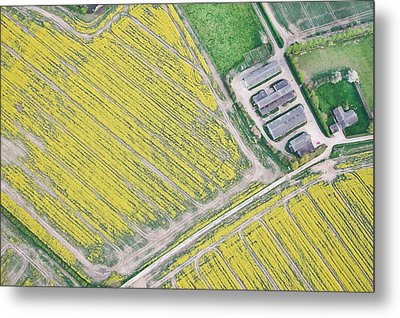 English Farm Metal Print by Tom Gowanlock