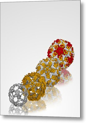 Enterovirus Capsid Proteins Structure Metal Print by Science Photo Library