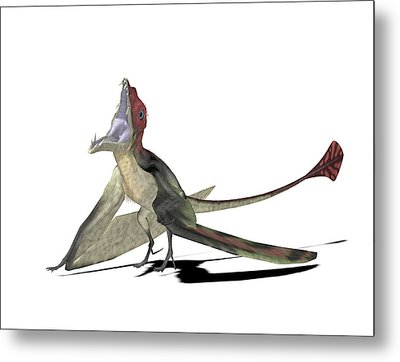 Eudimorphodon Pterosaur Metal Print