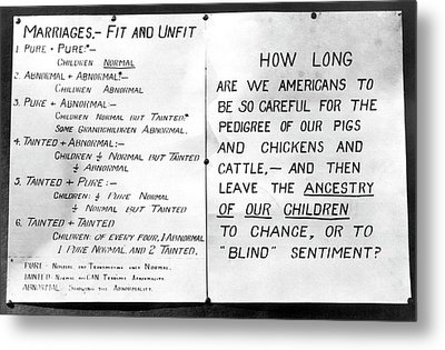 Eugenics Posters At Public Fair Metal Print by American Philosophical Society