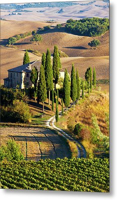 Europe, Italy, Tuscany, San Quirico Metal Print
